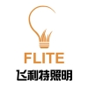 NANTONG FLITE LIGHTING TECHNOLOGY
