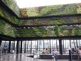 グリーンの癒し効果で集客力を上げる商業施設